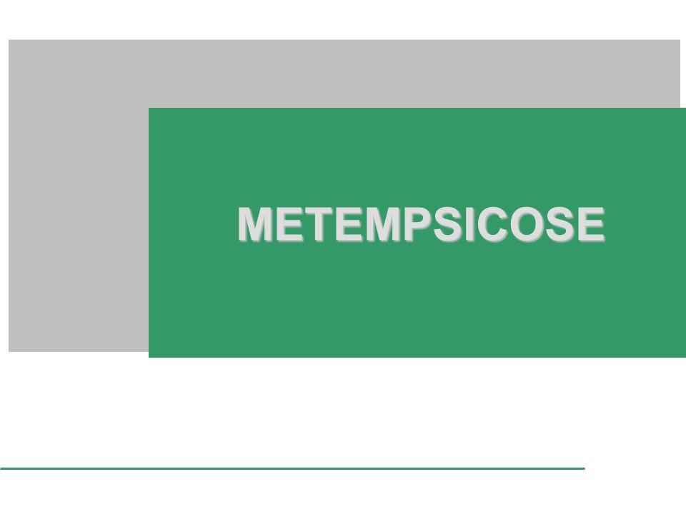 METEMPSICOSE