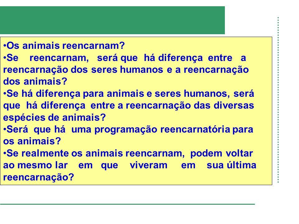 Os animais reencarnam Se reencarnam, será que há diferença entre a. reencarnação dos seres humanos e a reencarnação.