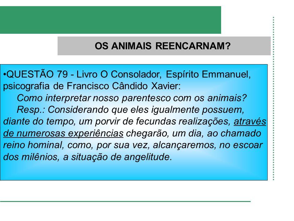OS ANIMAIS REENCARNAM QUESTÃO 79 - Livro O Consolador, Espírito Emmanuel, psicografia de Francisco Cândido Xavier: