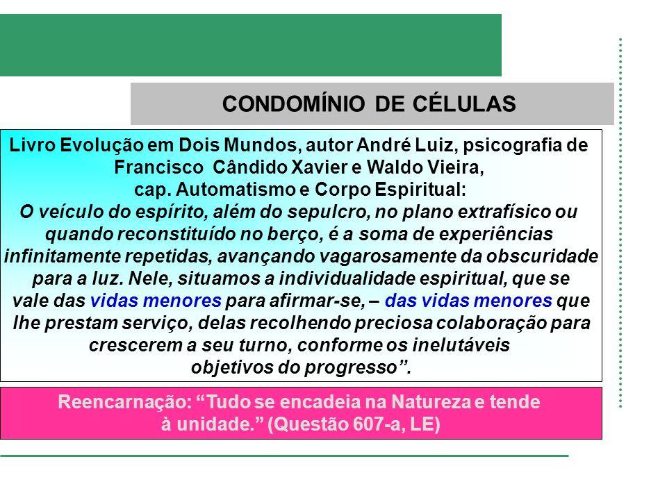 CONDOMÍNIO DE CÉLULAS Livro Evolução em Dois Mundos, autor André Luiz, psicografia de. Francisco Cândido Xavier e Waldo Vieira,