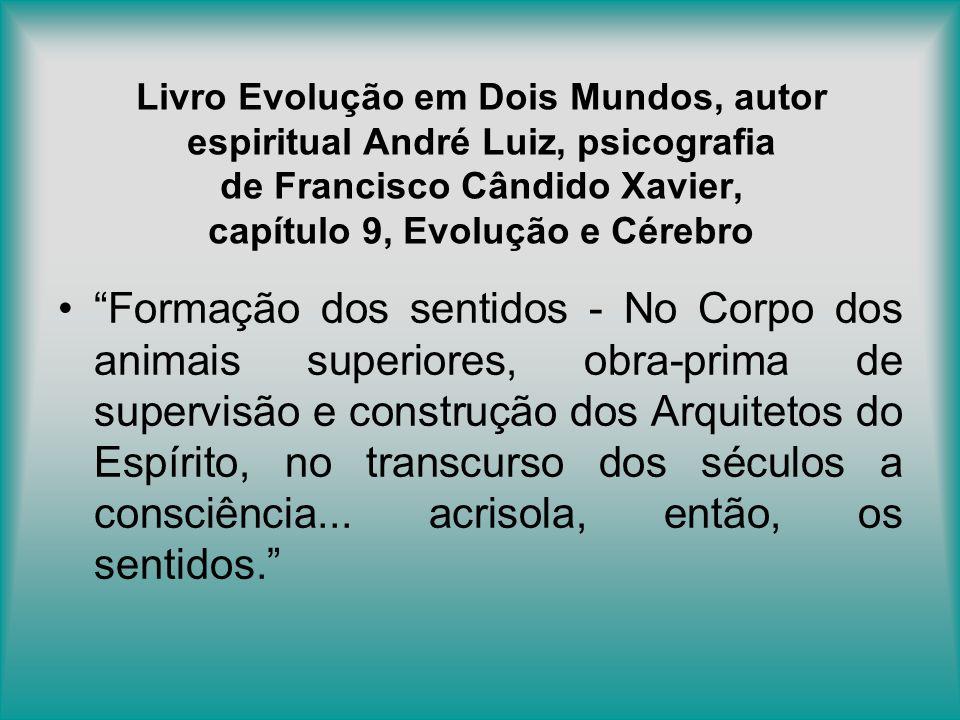 Livro Evolução em Dois Mundos, autor espiritual André Luiz, psicografia de Francisco Cândido Xavier, capítulo 9, Evolução e Cérebro