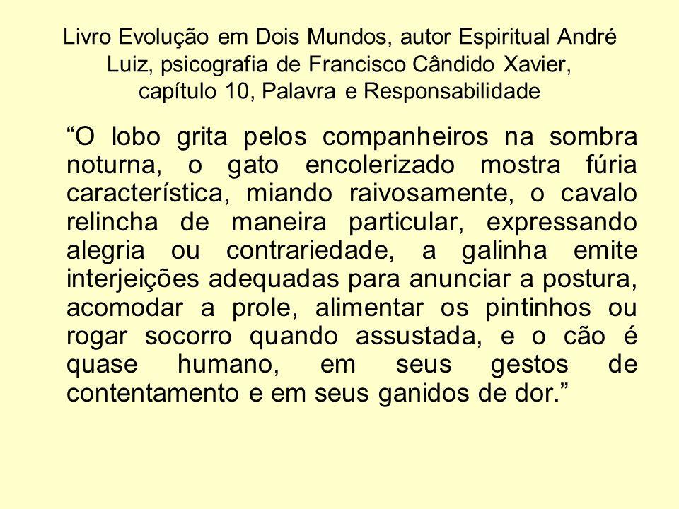 Livro Evolução em Dois Mundos, autor Espiritual André Luiz, psicografia de Francisco Cândido Xavier, capítulo 10, Palavra e Responsabilidade