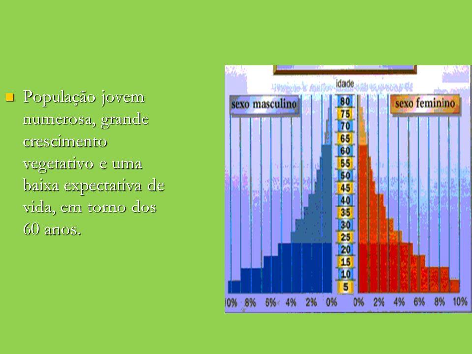 População jovem numerosa, grande crescimento vegetativo e uma baixa expectativa de vida, em torno dos 60 anos.