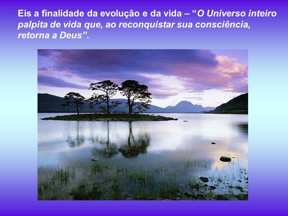 Eis a finalidade da evolução e da vida – O Universo inteiro palpita de vida que, ao reconquistar sua consciência, retorna a Deus .