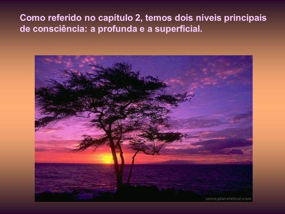 Como referido no capítulo 2, temos dois níveis principais de consciência: a profunda e a superficial.