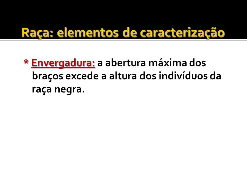 Raça: elementos de caracterização
