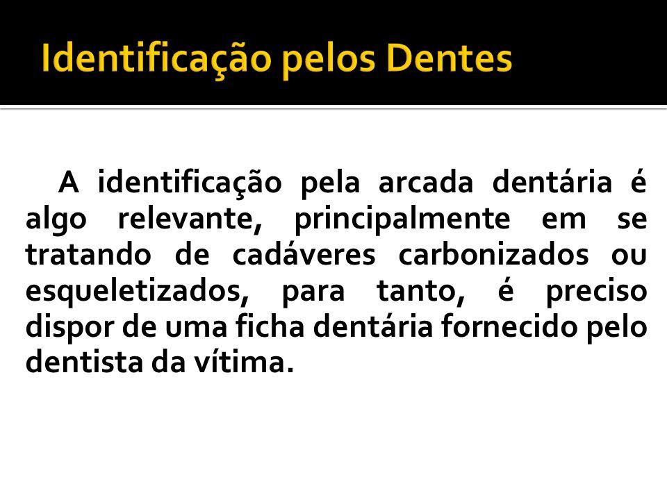 Identificação pelos Dentes