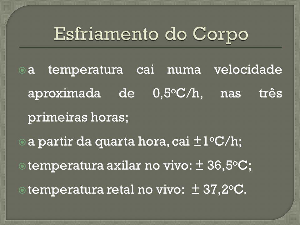 Esfriamento do Corpo a temperatura cai numa velocidade aproximada de 0,5oC/h, nas três primeiras horas;
