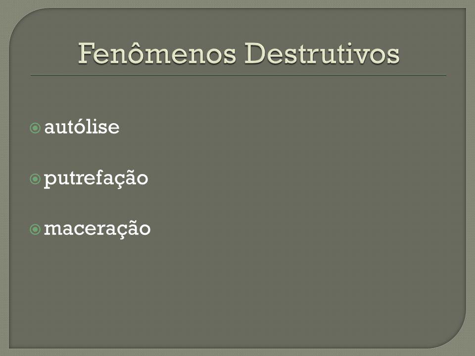 Fenômenos Destrutivos