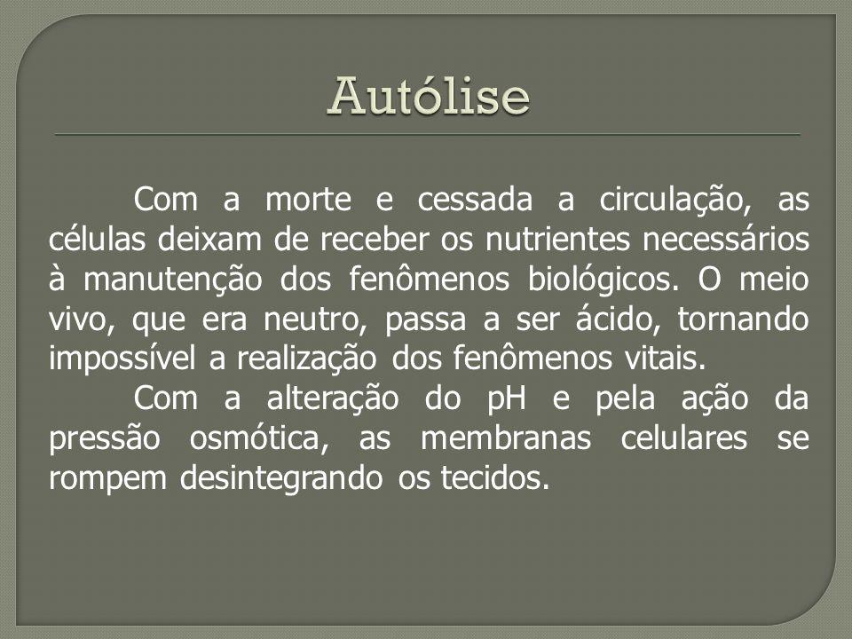 Autólise