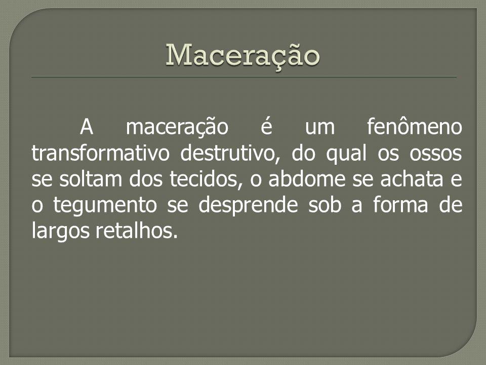 Maceração