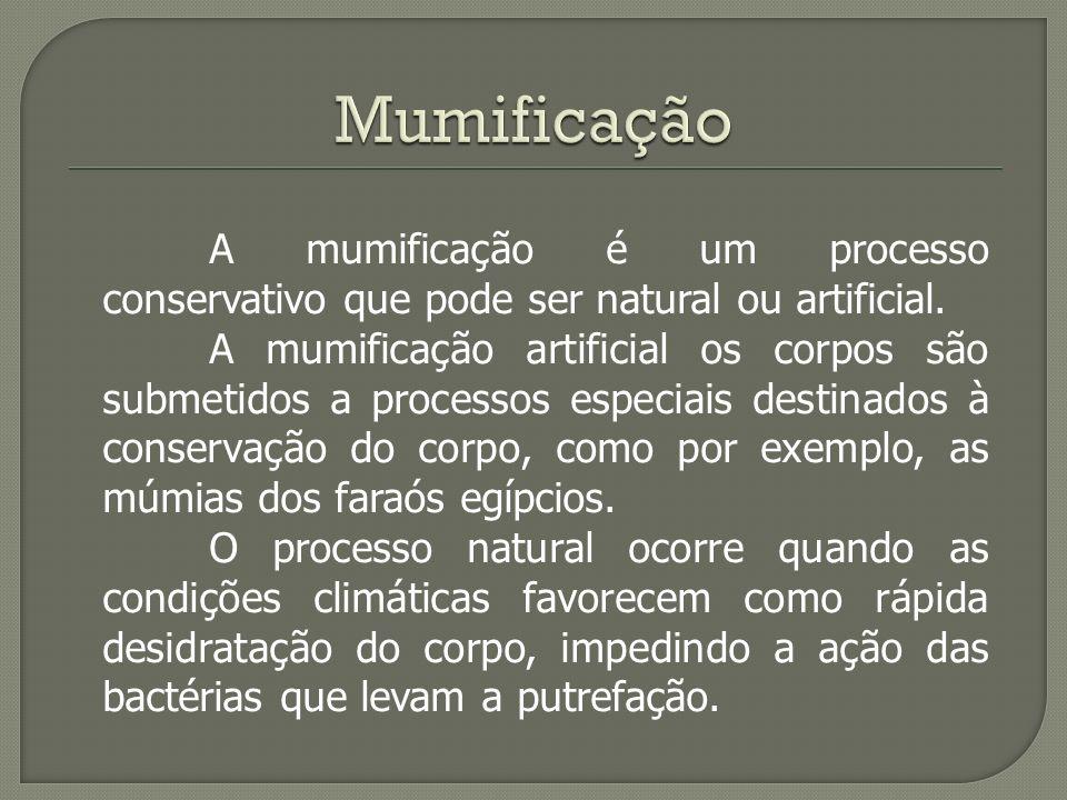 Mumificação A mumificação é um processo conservativo que pode ser natural ou artificial.