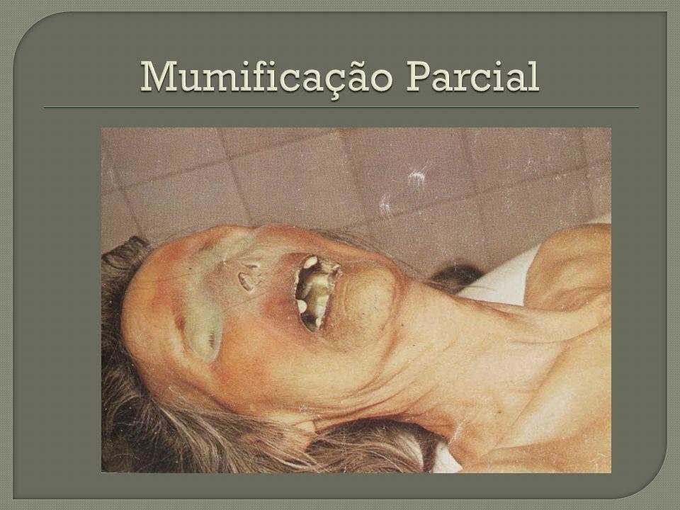 Mumificação Parcial