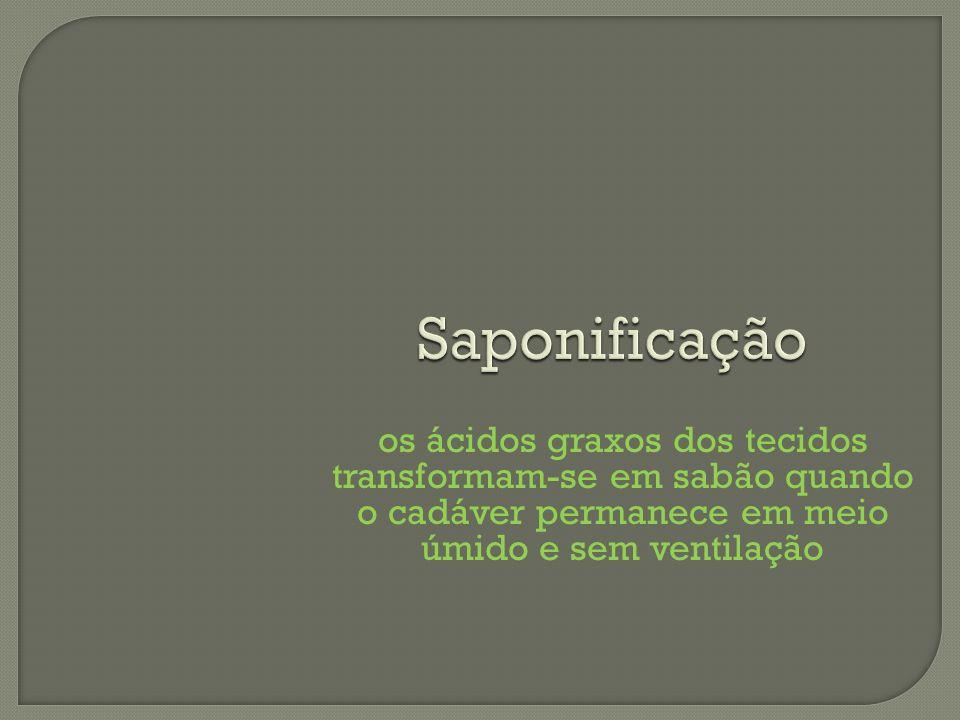 Saponificaçãoos ácidos graxos dos tecidos transformam-se em sabão quando o cadáver permanece em meio úmido e sem ventilação.