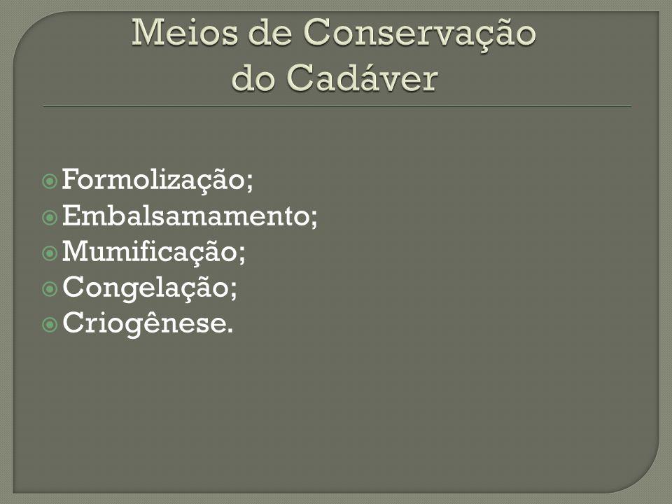 Meios de Conservação do Cadáver