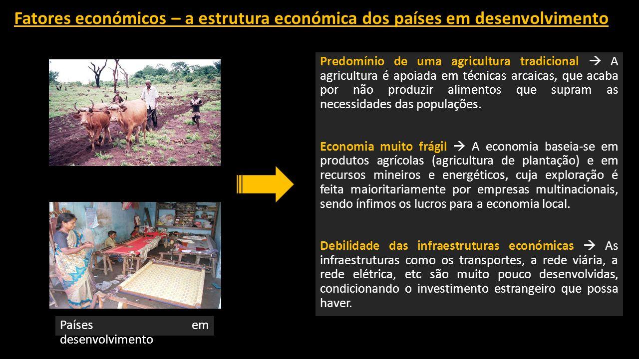 Fatores económicos – a estrutura económica dos países em desenvolvimento