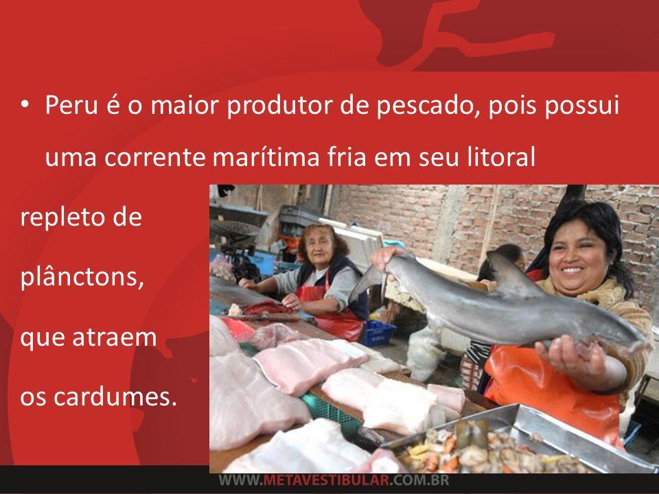 Peru é o maior produtor de pescado, pois possui uma corrente marítima fria em seu litoral