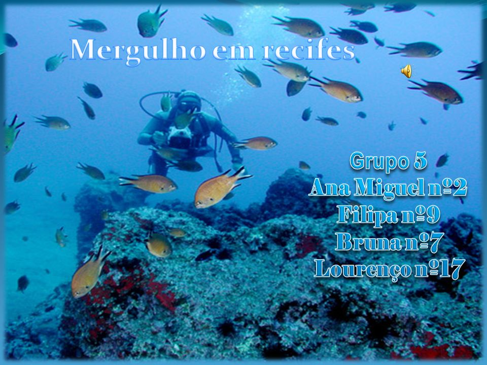 Mergulho em recifes Grupo 5 Ana Miguel nº2 Filipa nº9 Bruna nº7
