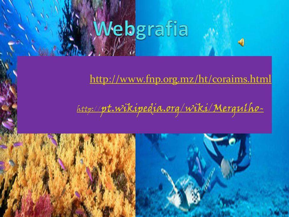 Webgrafia http://www.fnp.org.mz/ht/coraims.html