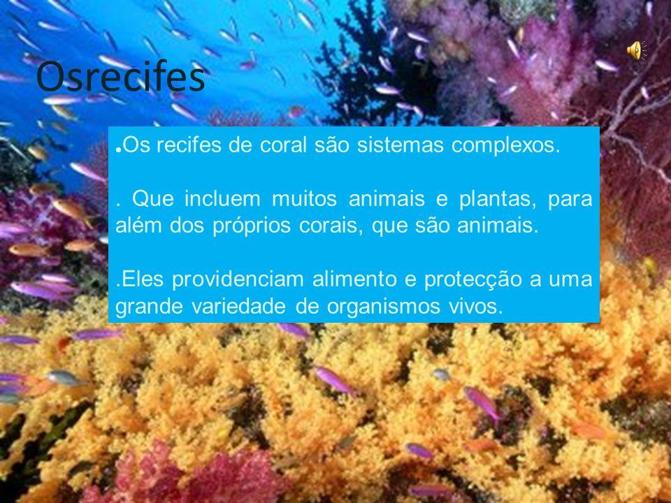 Osrecifes .Os recifes de coral são sistemas complexos.