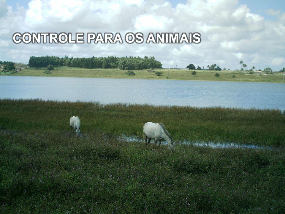 CONTROLE PARA OS ANIMAIS