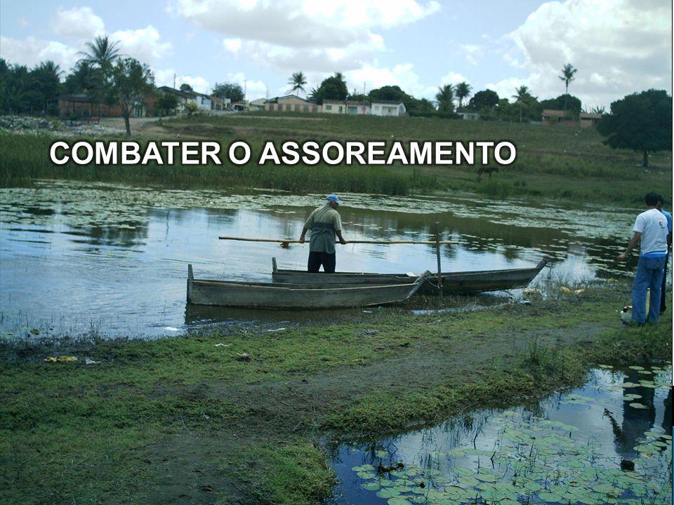 COMBATER O ASSOREAMENTO