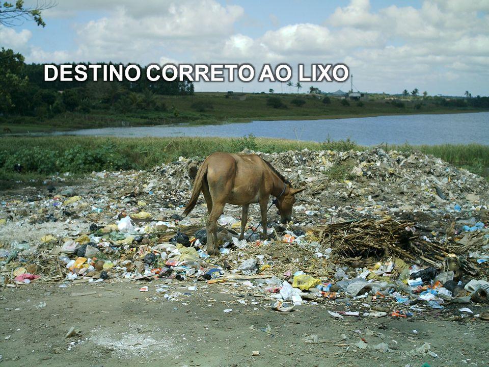 DESTINO CORRETO AO LIXO