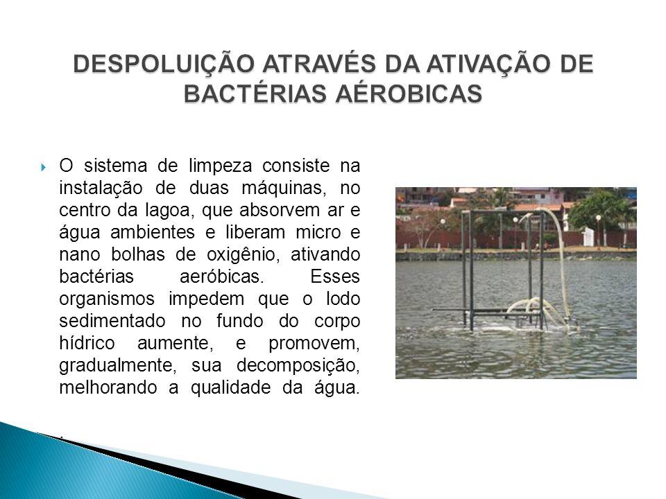 DESPOLUIÇÃO ATRAVÉS DA ATIVAÇÃO DE BACTÉRIAS AÉROBICAS