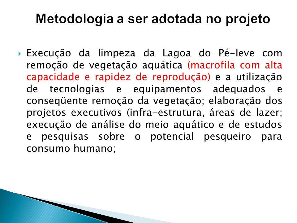 Metodologia a ser adotada no projeto