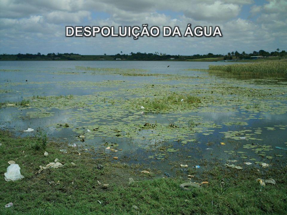 DESPOLUIÇÃO DA ÁGUA