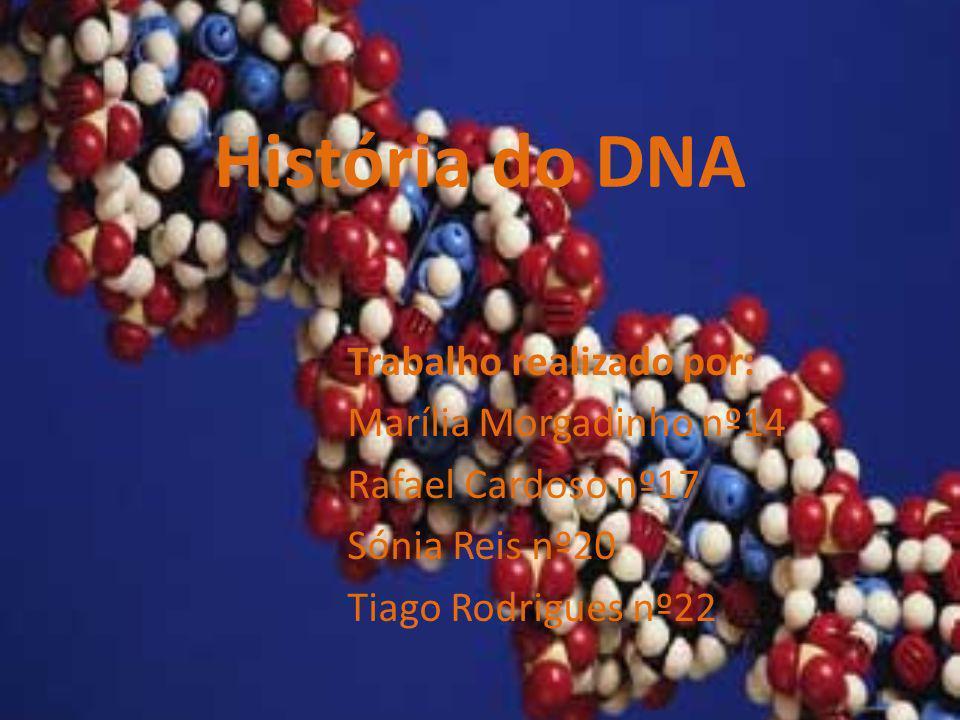 História do DNA Trabalho realizado por: Marília Morgadinho nº14