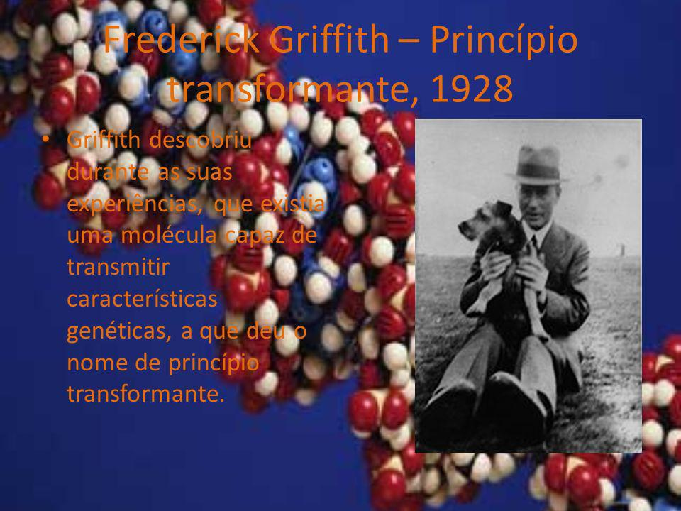 Frederick Griffith – Princípio transformante, 1928