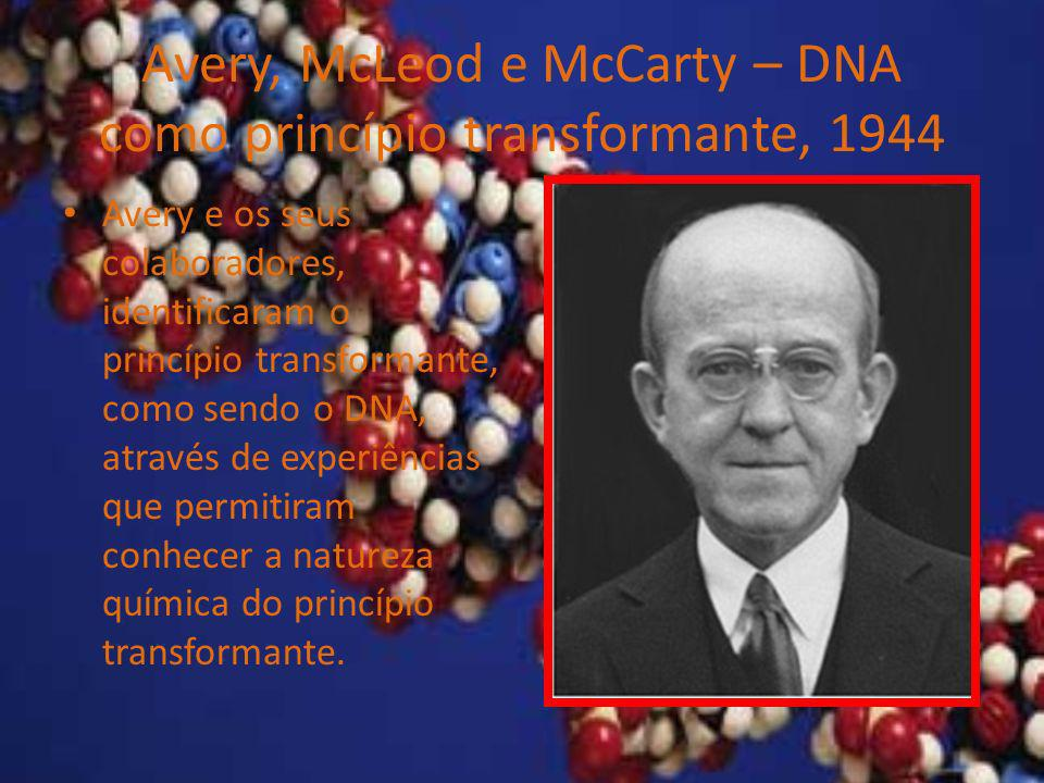 Avery, McLeod e McCarty – DNA como princípio transformante, 1944