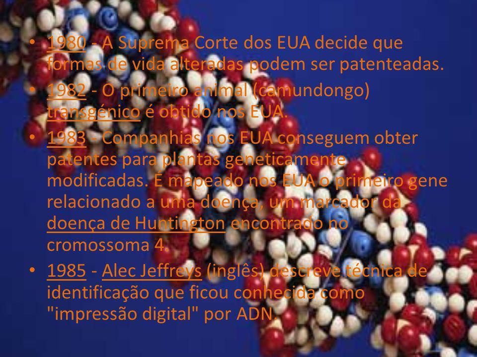 1980 - A Suprema Corte dos EUA decide que formas de vida alteradas podem ser patenteadas.