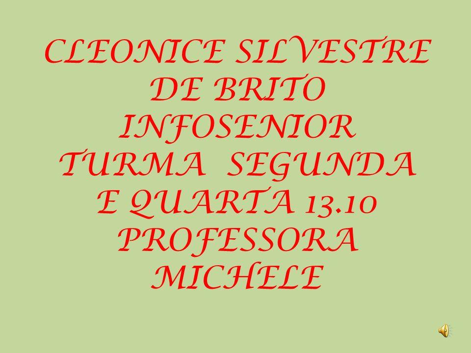 CLEONICE SILVESTRE DE BRITO INFOSENIOR TURMA SEGUNDA E QUARTA 13