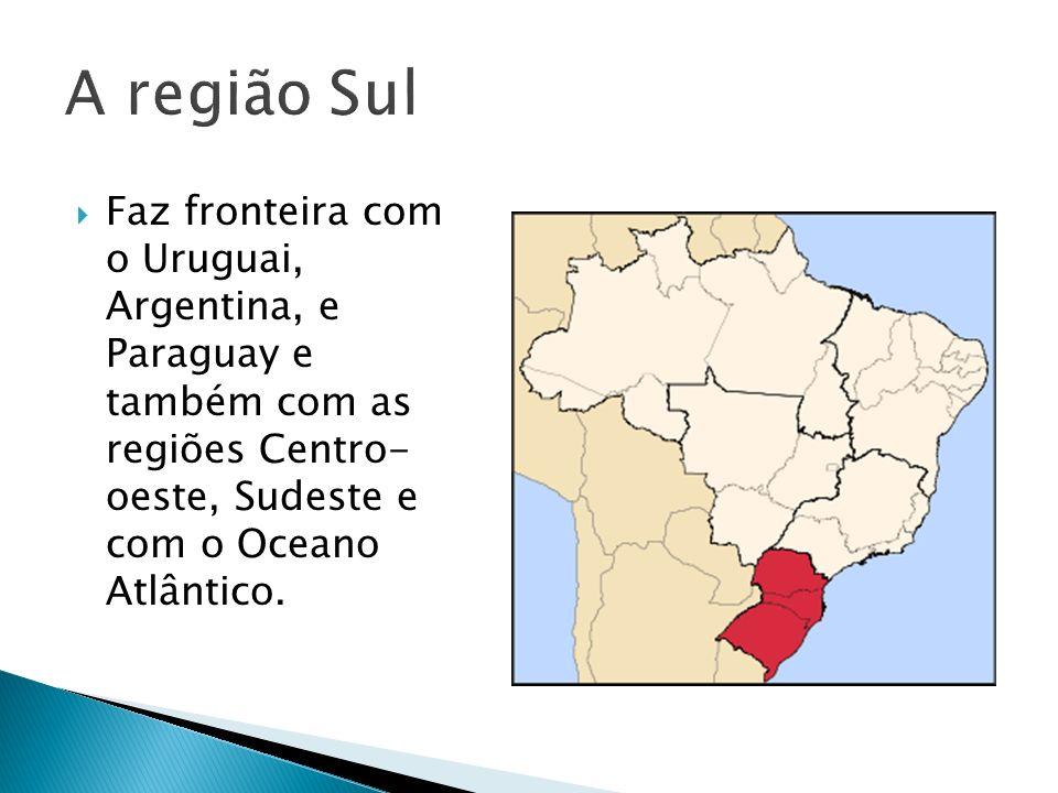 A região Sul Faz fronteira com o Uruguai, Argentina, e Paraguay e também com as regiões Centro- oeste, Sudeste e com o Oceano Atlântico.