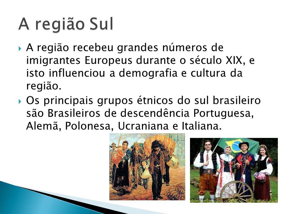 A região Sul A região recebeu grandes números de imigrantes Europeus durante o século XIX, e isto influenciou a demografia e cultura da região.