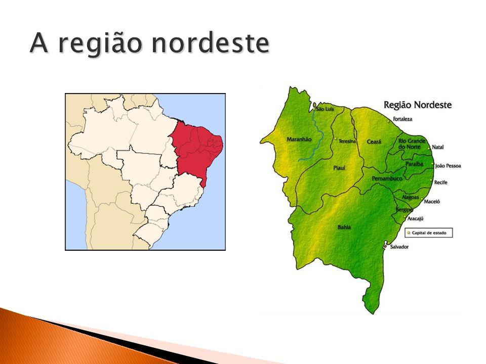 A região nordeste