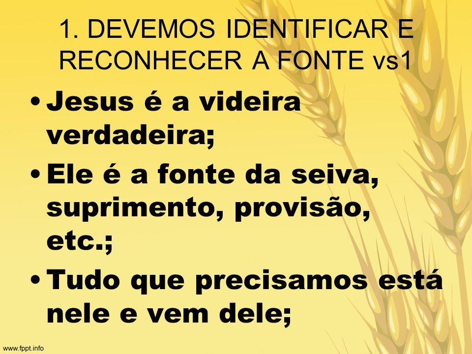 1. DEVEMOS IDENTIFICAR E RECONHECER A FONTE vs1