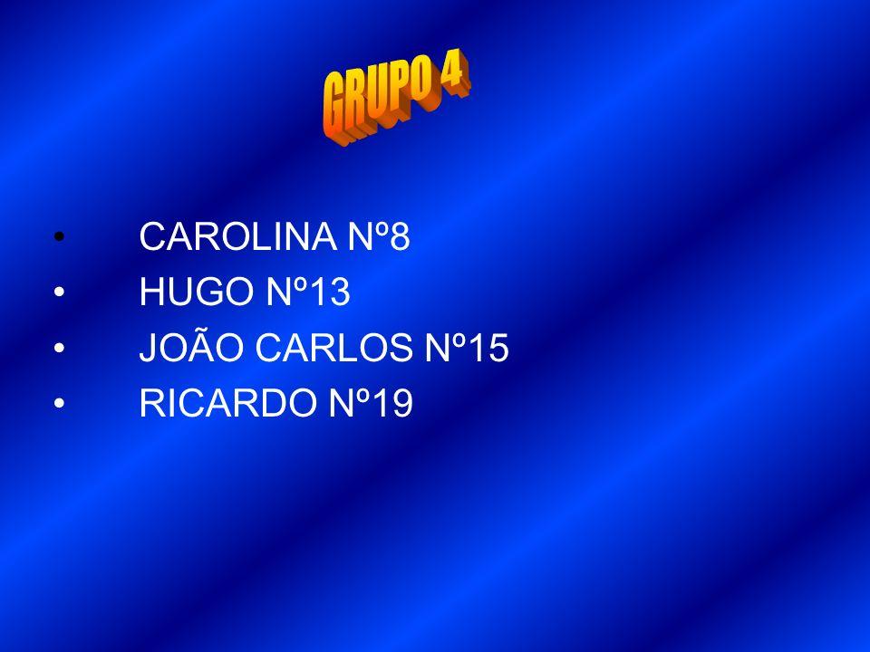 GRUPO 4 CAROLINA Nº8 HUGO Nº13 JOÃO CARLOS Nº15 RICARDO Nº19