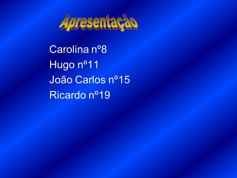 Apresentação Carolina nº8 Hugo nº11 João Carlos nº15 Ricardo nº19