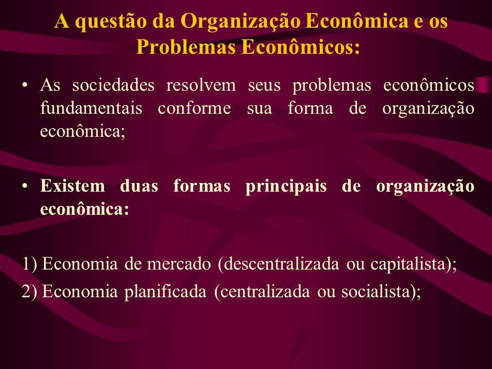 A questão da Organização Econômica e os Problemas Econômicos: