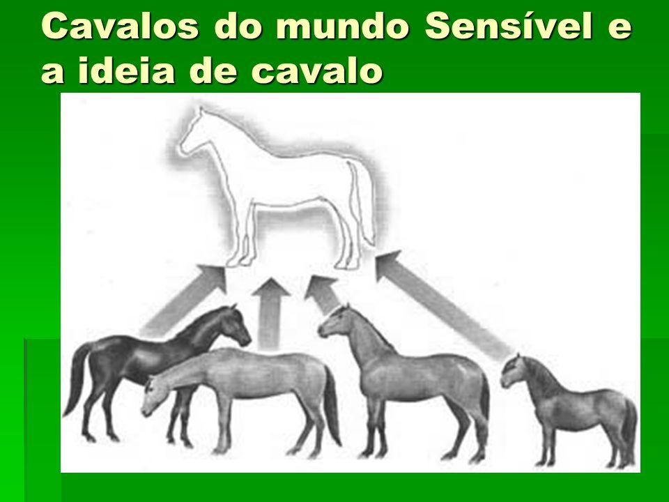 Cavalos do mundo Sensível e a ideia de cavalo