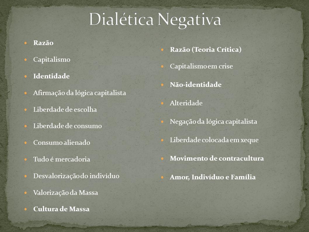 Dialética Negativa Razão Capitalismo Razão (Teoria Crítica)