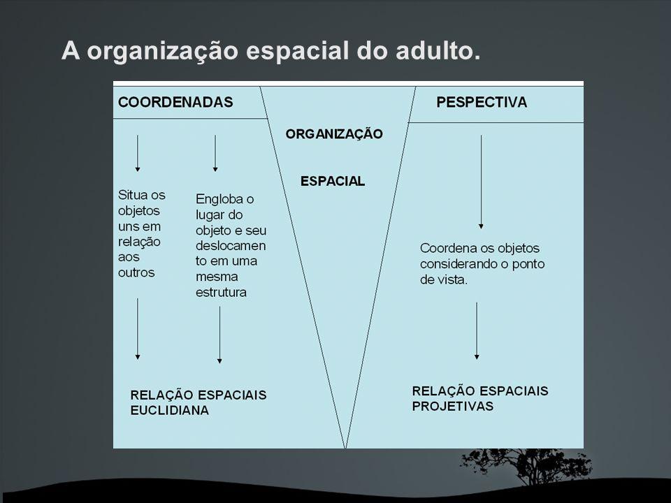 A organização espacial do adulto.