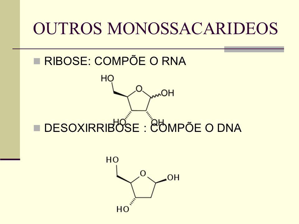 OUTROS MONOSSACARIDEOS