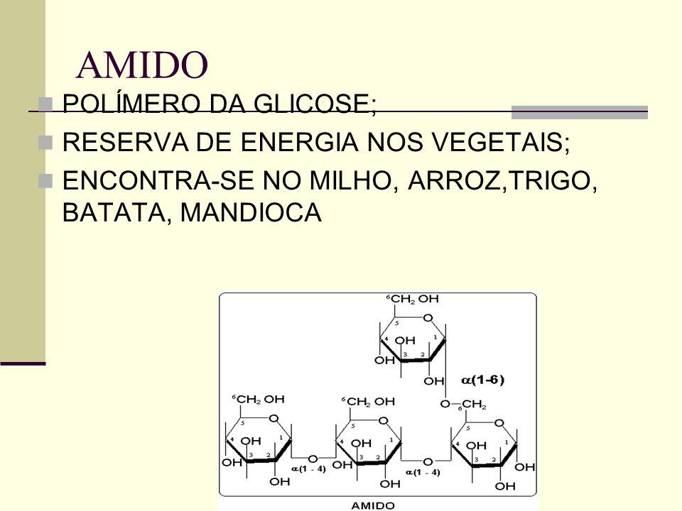 AMIDO POLÍMERO DA GLICOSE; RESERVA DE ENERGIA NOS VEGETAIS;