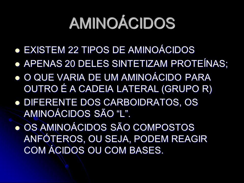 AMINOÁCIDOS EXISTEM 22 TIPOS DE AMINOÁCIDOS