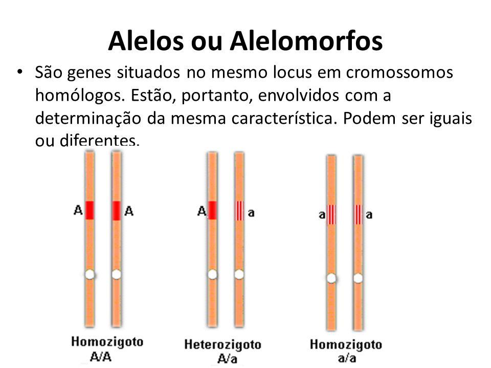 Alelos ou Alelomorfos