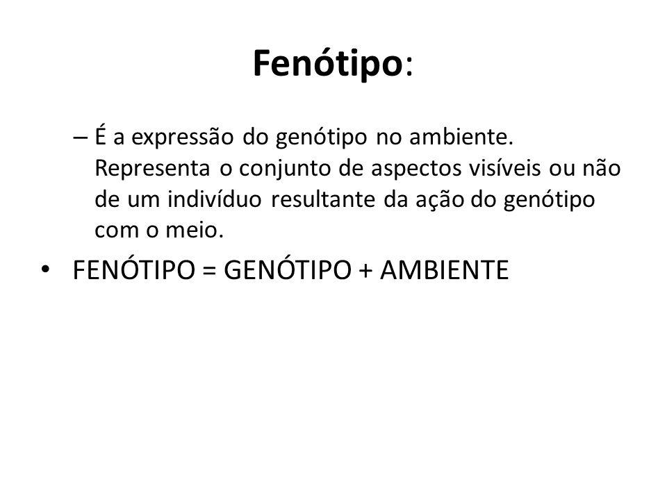 Fenótipo: FENÓTIPO = GENÓTIPO + AMBIENTE